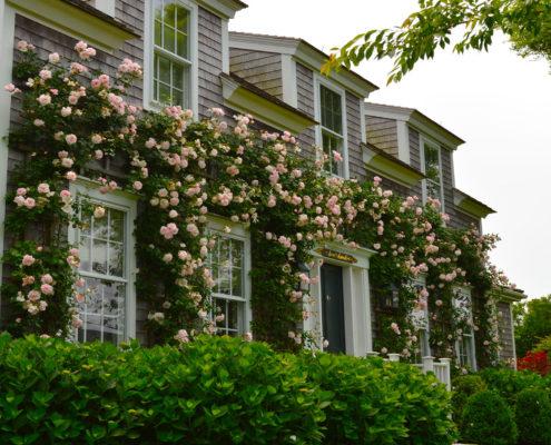 nantucket landscaping companies