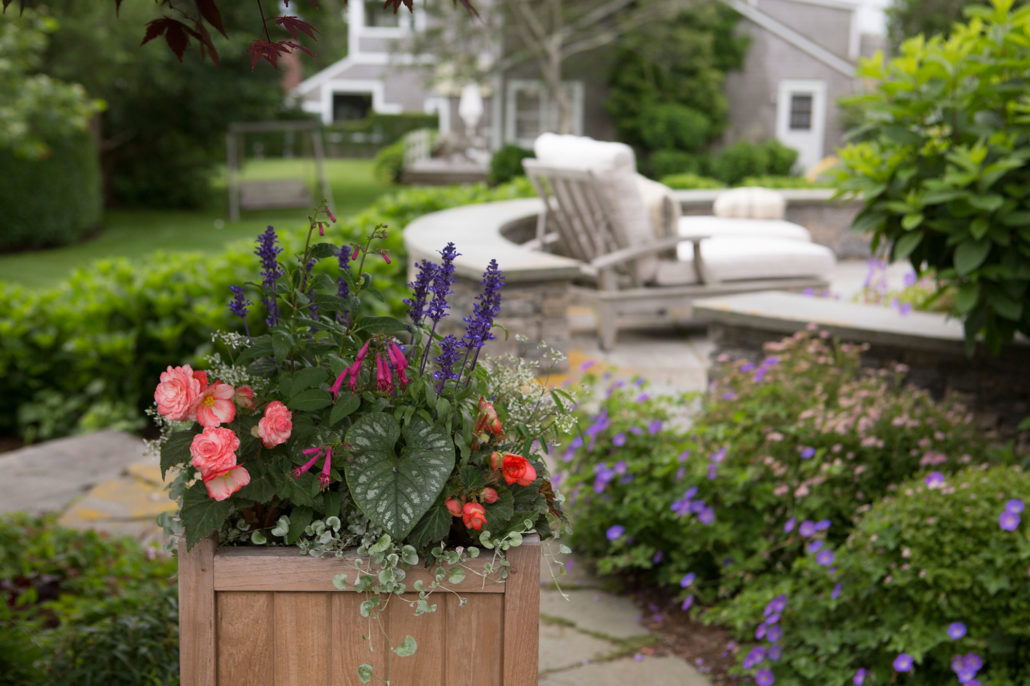 nantucket window boxes and containers